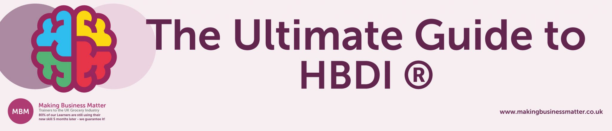 Ultimate Guide Featured Image - HBDI
