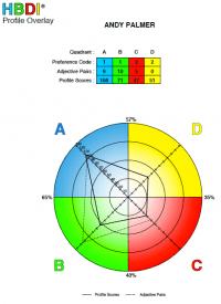 HBDI results interpretation