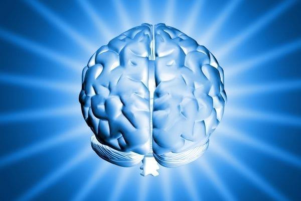 Shiny Brain, self discover