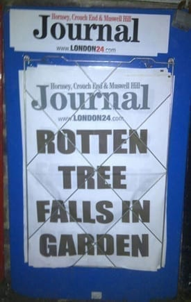 News stand headline -'rotten tree falls in garden'
