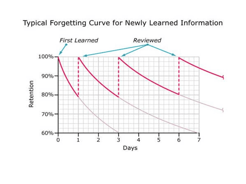 Typical Forgetting Curve for Newly Learned Information - MBM