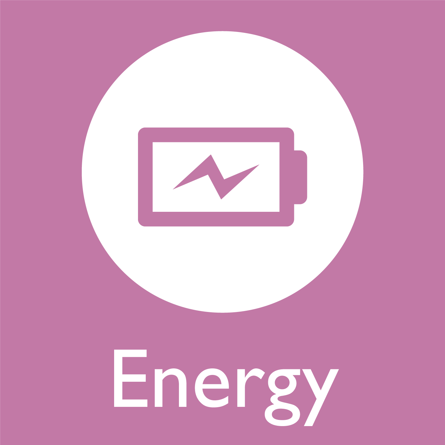 MBTI Energy Icon (Extroverts and Introverts)