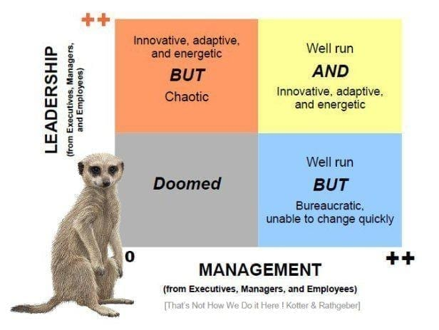 Image of leadership vs. management matrix, that's not how we do it here book