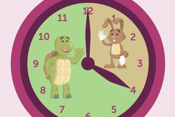 A clock split into the hare and the tortoise sections