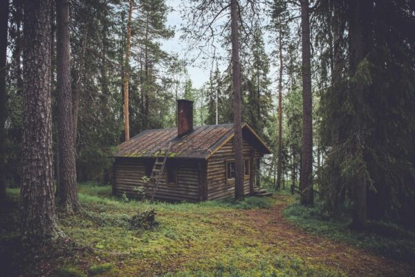 An isolated, run-down cabin in the woods