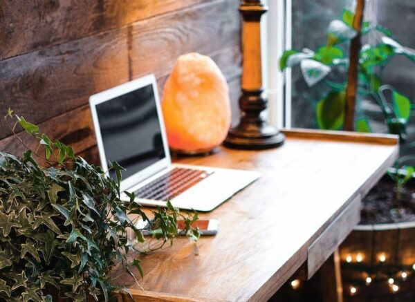 A wooden table with an open laptop, lamp and a plant on it
