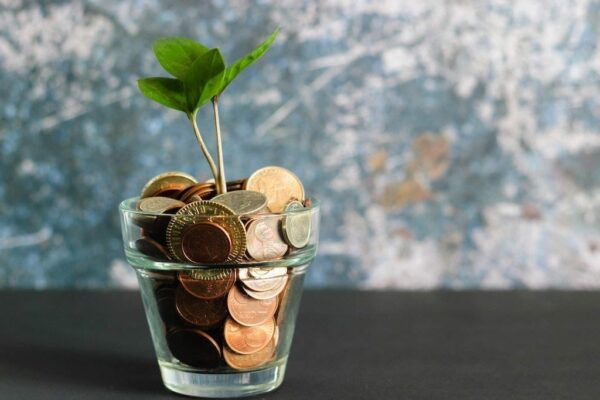 A small glass filled with copper coins, with a small plant sprouting