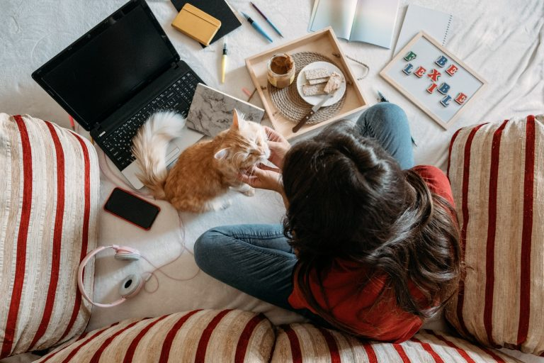 Woman working from home surrounded by her cat, food and cushions