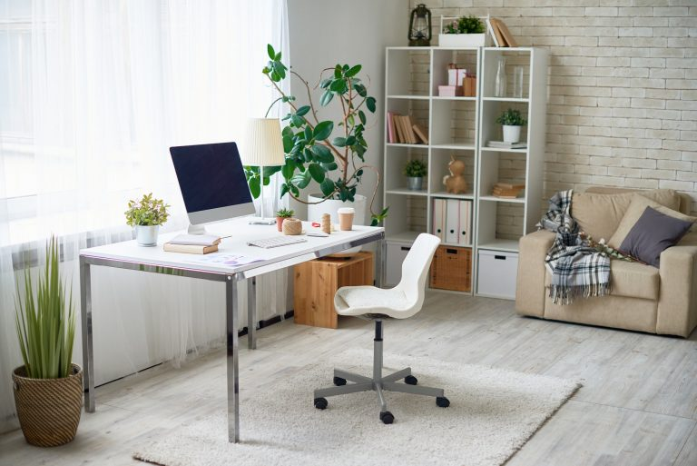 Modern home office with sofa and plant