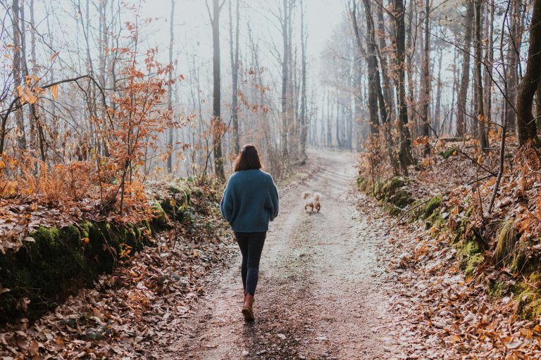 Woman walking her dog in wooded areas with leaves on the ground