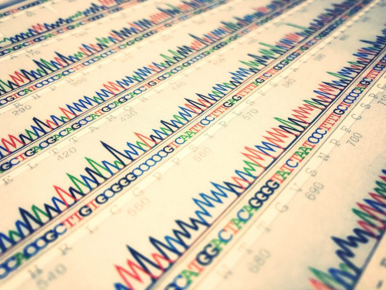 Multi coloured sequence graphs