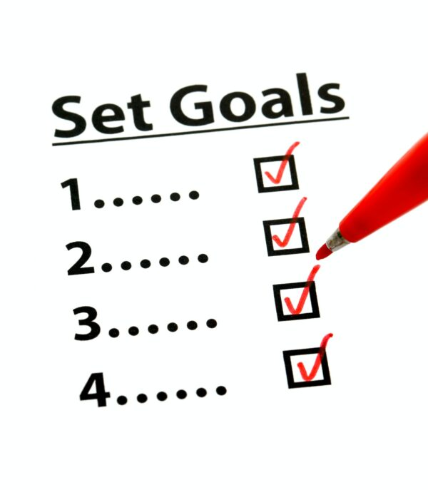 4 check boxes with Set Goals as the title and red ticks