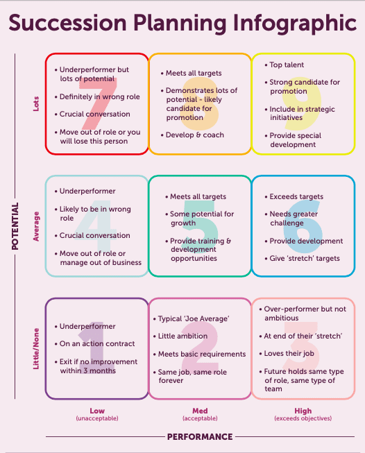 Succession planning infographic with coloured boxes