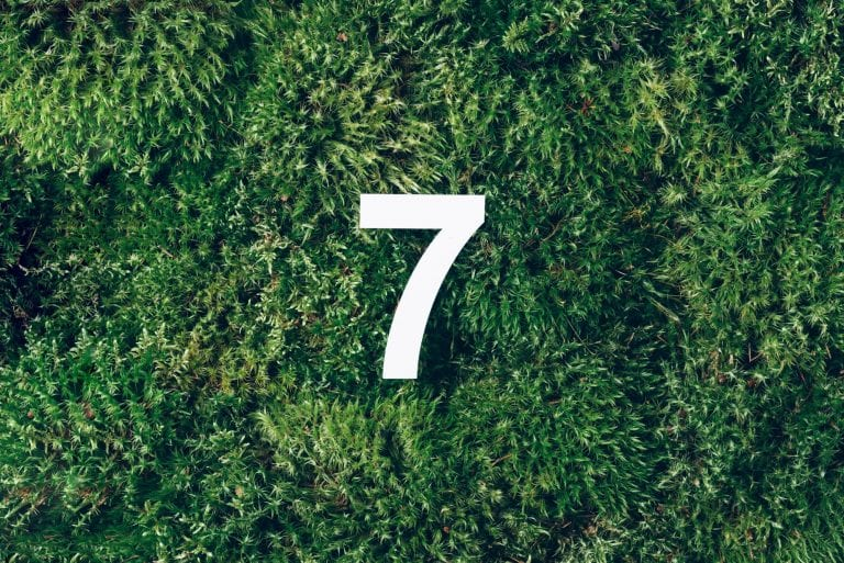 White number 7 on grass
