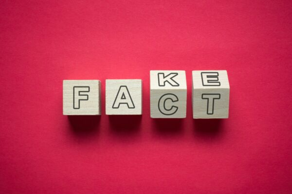 Wooden cubes saying Fact and Fake