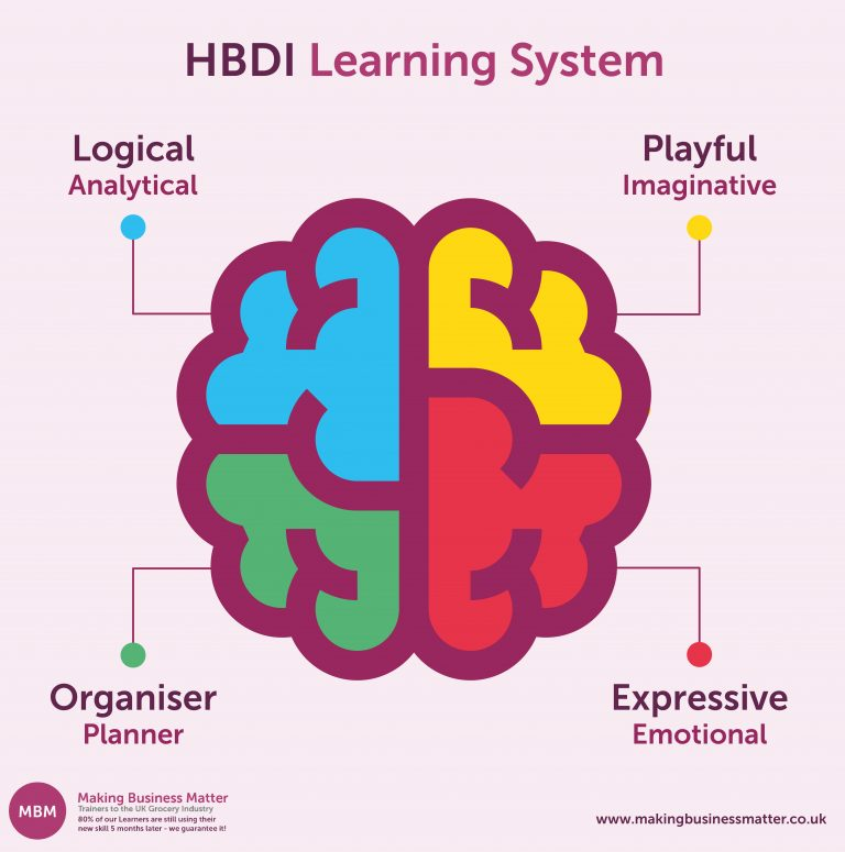 Brain coloured in four parts to show HBDI model