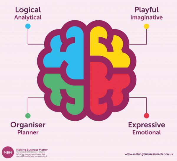Cartoon brain split into four colours for HBDI